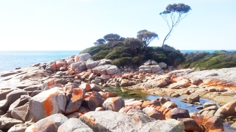 Bay of Fires-5