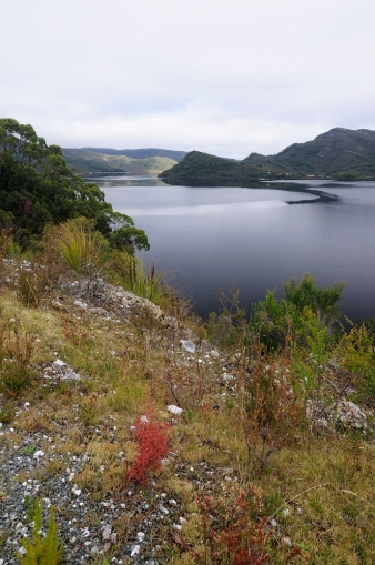 Lake Pedder 038-web