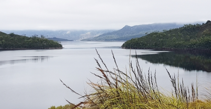 Lake Pedder 129